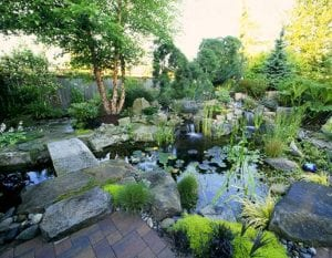 Landscapes by Linda - Seattle Landscape Design Project image